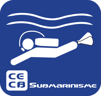 Curs submarinisme 2 Estrelles 2018
